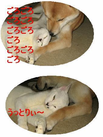 e0085147_11225997.jpg