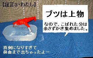 a0048531_1842349.jpg