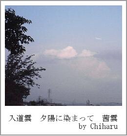 c0046340_1958126.jpg