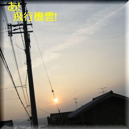 e0085147_08127.jpg