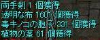 e0048268_11482642.jpg