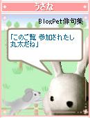 a0063386_19553083.jpg