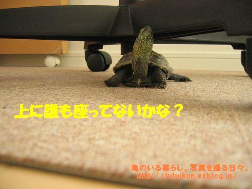 c0003036_22335818.jpg