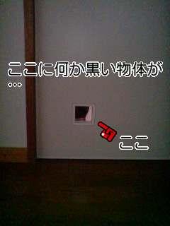 a0074110_15111426.jpg