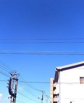 a0053527_17231417.jpg