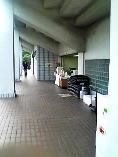 a0024005_15409.jpg