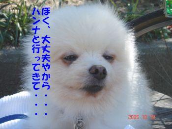 c0087521_13413250.jpg