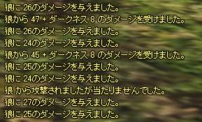 a0005030_5393189.jpg