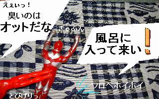 a0048531_9475453.jpg
