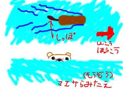 a0046159_010269.jpg