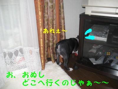 c0092787_11305316.jpg