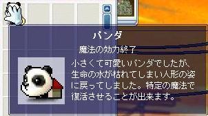 c0087281_19561399.jpg