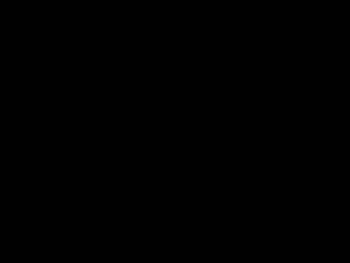 c0084576_1853583.jpg