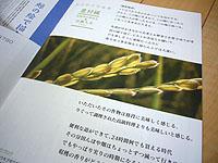 c0027965_23294196.jpg