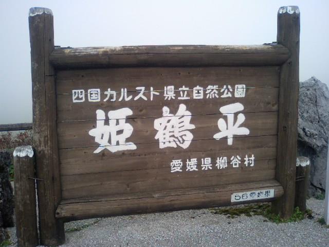 c0100217_135193.jpg