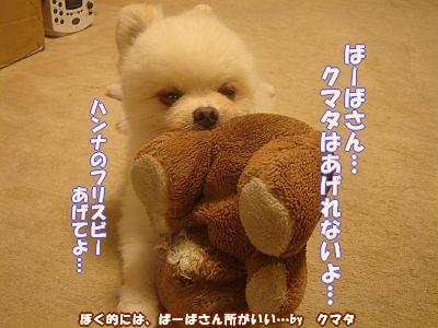 c0087521_120546.jpg
