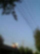c0068783_1644212.jpg