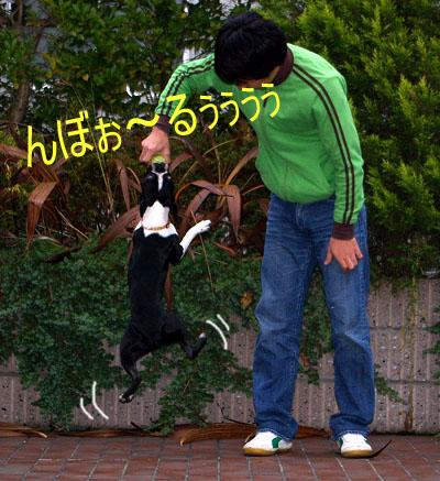 c0032567_2082332.jpg
