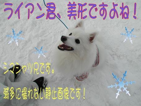 c0105157_1434457.jpg