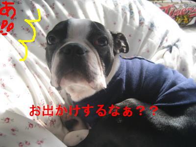 c0092787_13561543.jpg