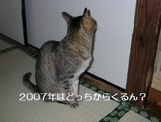 c0103205_2085330.jpg