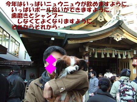 c0044199_1550248.jpg