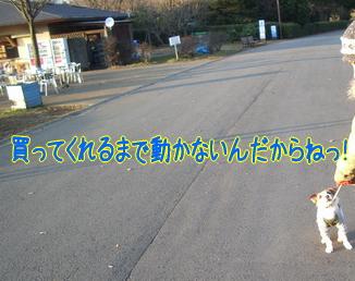 c0030328_21412615.jpg