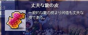e0020055_433639.jpg