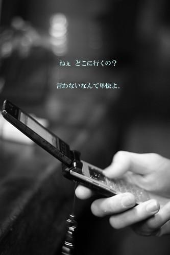 e0002214_1611305.jpg