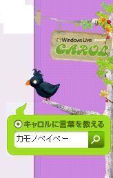 e0037152_2073962.jpg