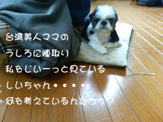 c0105157_18441886.jpg