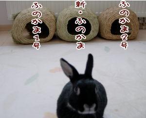 c0020973_13532476.jpg