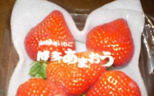 c0098379_130481.jpg