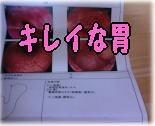 a0075802_23264761.jpg