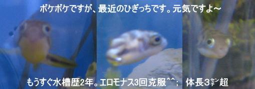 a0014770_22251847.jpg