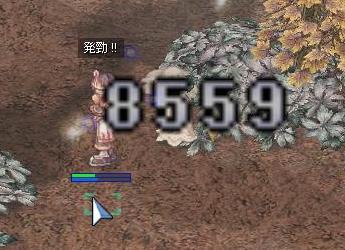 e0076602_21252643.jpg