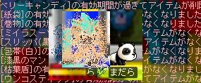 c0055827_215982.jpg