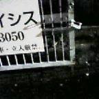 c0073845_041021.jpg