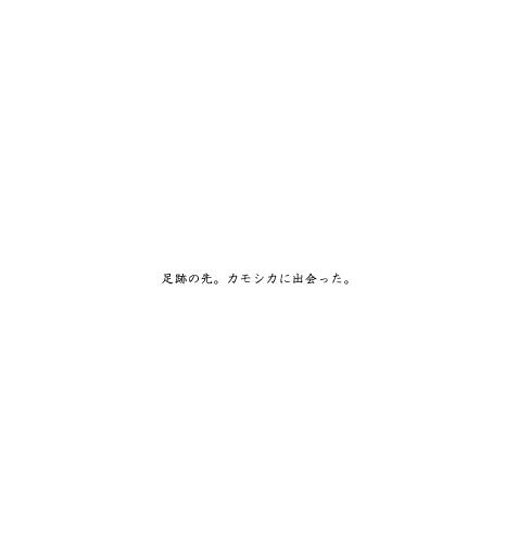 c0003941_2224051.jpg