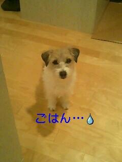 c0022147_1483571.jpg
