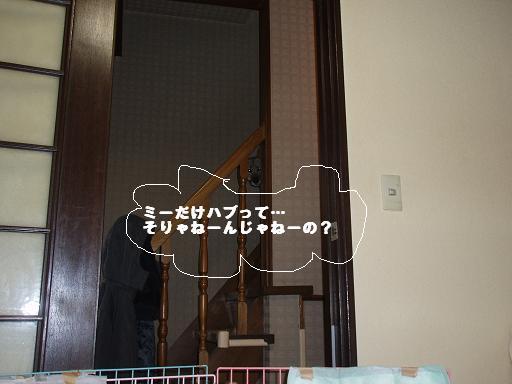 c0000189_1538759.jpg