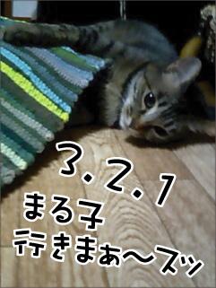 c0012445_832192.jpg