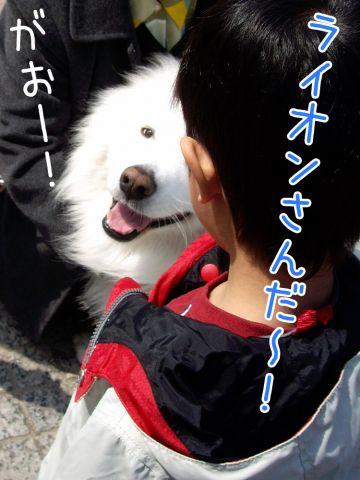 c0062832_17124991.jpg