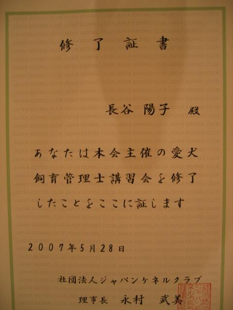a0102602_22174314.jpg