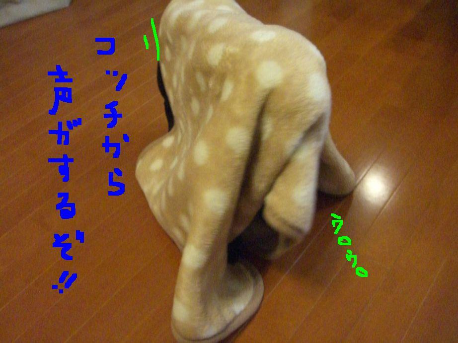 c0113109_22574838.jpg