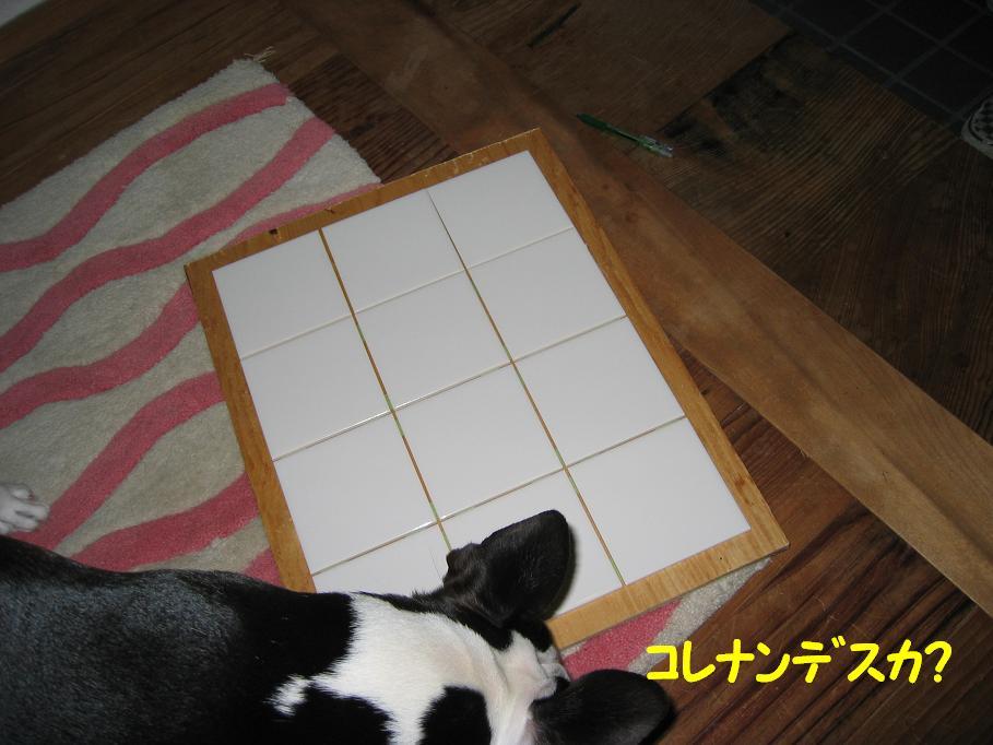 a0080889_051265.jpg