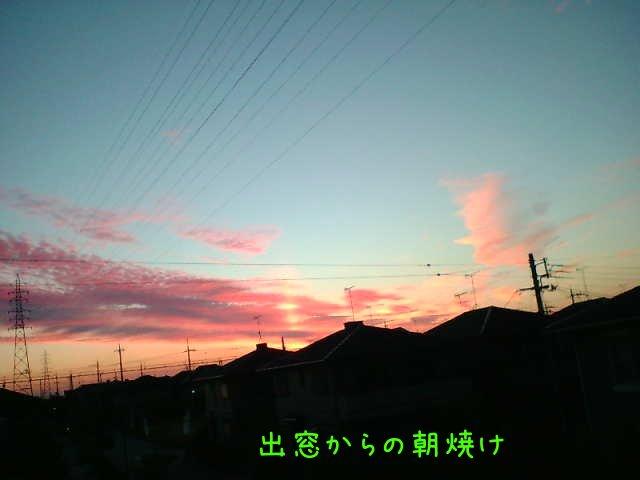 e0071819_6535736.jpg