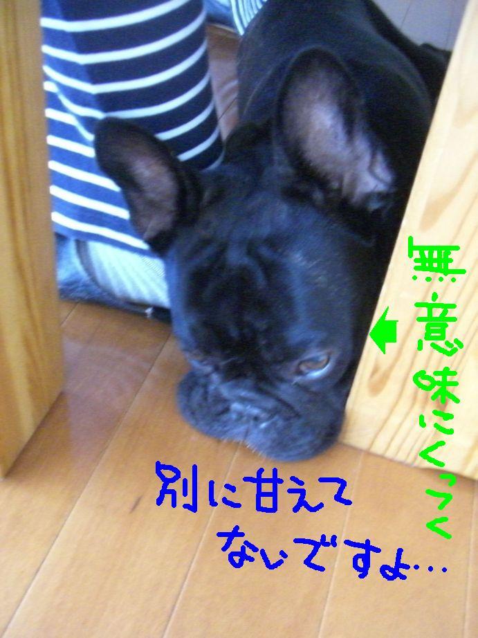 c0113109_17193.jpg