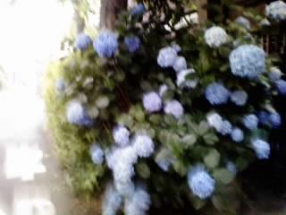 e0112879_04033100.jpg