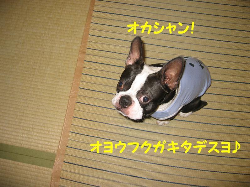 a0080889_0381442.jpg